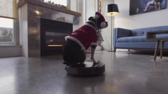 Cachorro Enceradeira De Natal, Para Enfeitar Sua Noite Natalina!