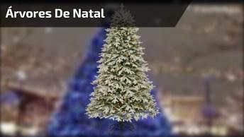 Imagens De Natal Com Lindas Árvores, Compartilhe No Facebook!