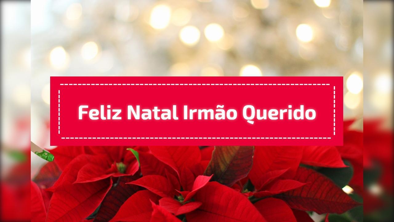 Mensagem de feliz natal irmão querido, o seu melhor amigo!!!