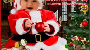 Mensagem De Feliz Natal Para Todos Amigos! Receba Estas Lindas Rosas De Natal!