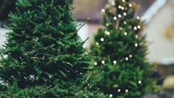 Mensagem De Natal Nascimento Jesus - Natal É Vida Em Abundância!