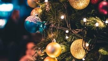 Mensagem De Natal Para O Chefe - Feliz Natal, Querido Chefe!