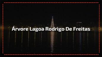Video De Natal Com A Árvore Da Lagoa Rodrigo De Freitas, Uma Mega-Estrutura!