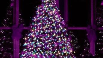 Video De Natal Com Árvore Muito Linda, Quem Não Queria Uma Dessa Hein?