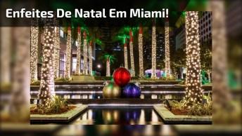 Video De Natal Com Enfeites Em Miami, Veja Que Lindo E Radiante!
