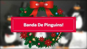 Videos De Natal Com Música, Veja O Que Essa Banda De Pinguim Esta Aprontando!