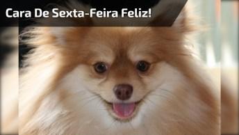 Frases De Sexta-Feira Para Facebook, Compartilhe Com Seus Amigos!