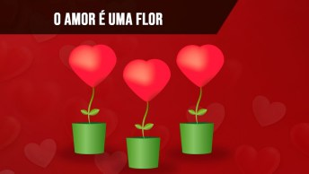 A Flor Que Desabrocha Mesmo Fora Das Estações, É Amor!