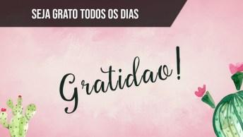 Seja Grato Todos Os Dias De Sua Vida, Vale A Pena!