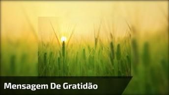 Vídeo Motivacional Com Mensagem De Gratidão. Se Você É Grato Compartilhe!