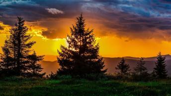 Boa Noite, Desejo A Você Uma Ótima Terça-Feira!