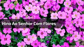 Hino Ao Senhor Com Imagens De Flores No Fundo, Para Compartilhar No Facebook!