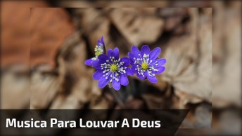 Linda Música De Soraya Moraes 'Quão Grande É O Meu Deus', Compartilhe!