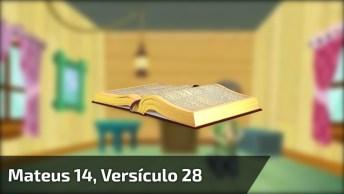 Mensagem Gospel Com Palavras Da Bíblia, Vale A Pena Conferir Cada Palavra!