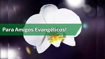 Mensagem Gospel Para Amigos Evangélicos! Confie Em Deus, Ele Te Ama Muito!