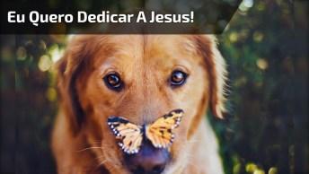Mensagem Gospel Para Facebook: Eu Quero Dedicar A Jesus!