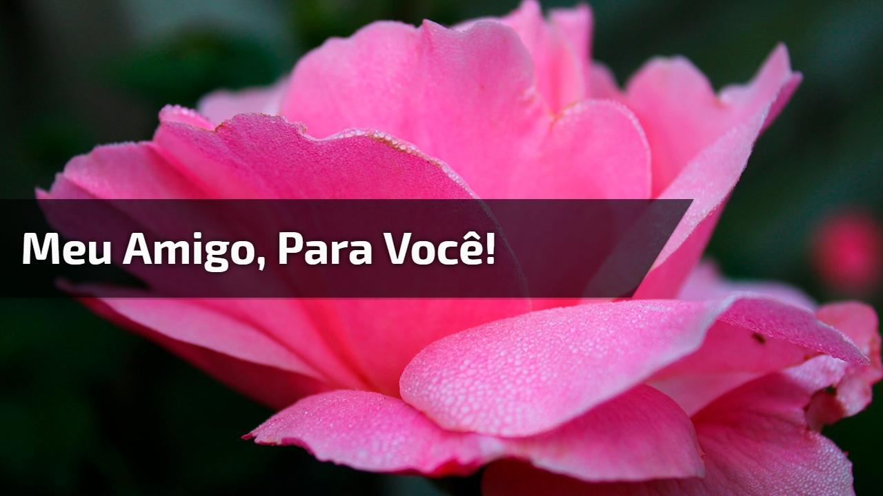Musica gospel com imagens de rosas, um lindo video evangélico para compartilhar!