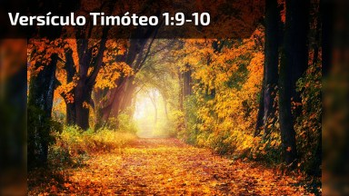 Versículo Do Dia, Timóteo 1: 9-10, Para Compartilhar No Facebook!