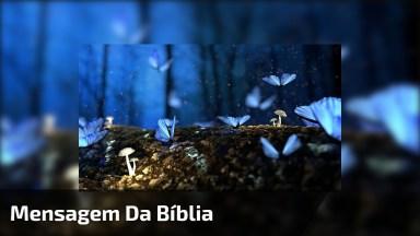 Vídeo Com Mensagem Da Bíblia Para Refletir. Sejamos Humildes Sempre!
