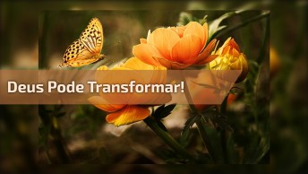 Vídeo Com Mensagem Gospel. Deus Pode Transformar Sua Vida!