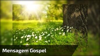 Vídeo Com Mensagem Gospel Para Quem Confia Em Deus. O Senhor Jamais Te Abandona!