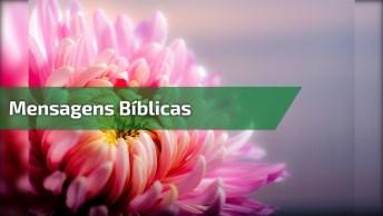 Vídeo Com Mensagens Da Bíblia, Vale A Pena Conferir Cada Palavra!