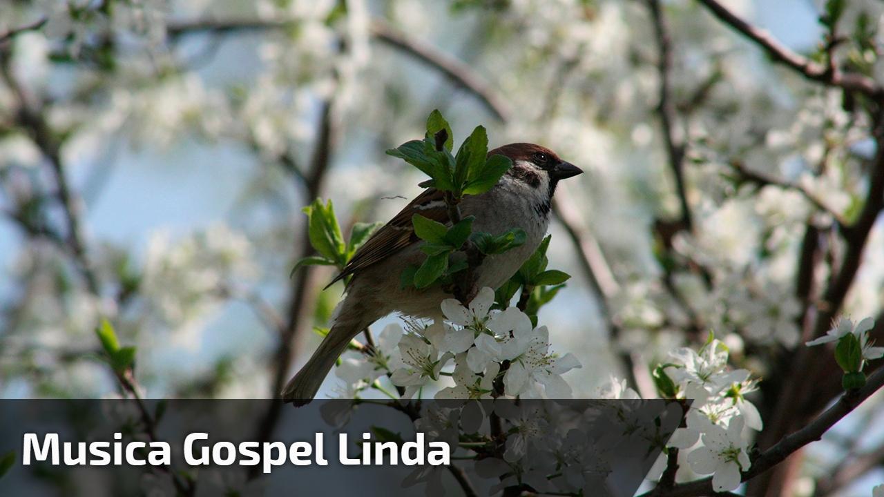 Musica gospel linda
