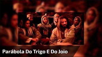 Vídeo Da Bíblia Com A Mensagem Onde Jesus Declara A Parábola Do Trigo E Do Joio!