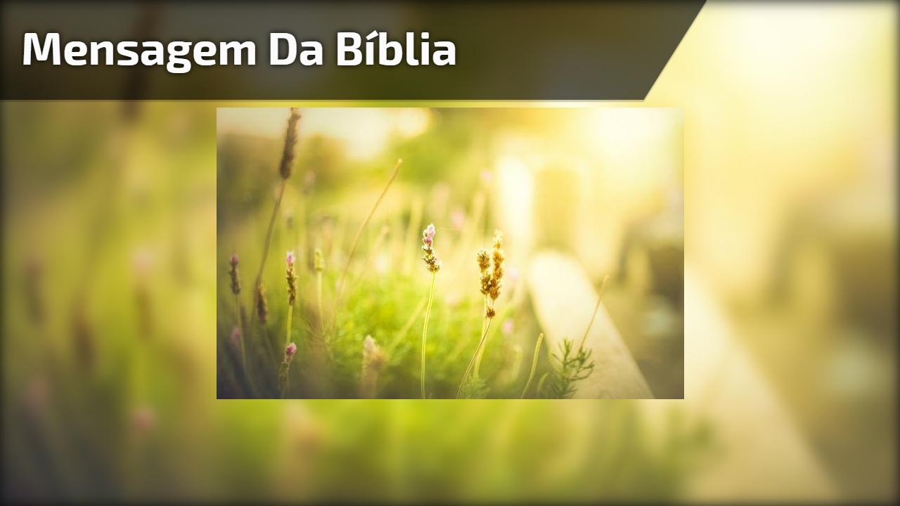 Mensagem da bíblia