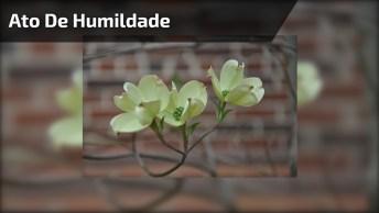 Ato De Humildade - Santo Agostinho - Uma Linda Oração Para Compartilhar!