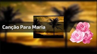 Canção Para Coroar A Maria, Mãe De Jesus, A Senhora Da Luz!