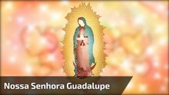 Curiosidades Sobre Nossa Senhora De Guadalupe, Compartilhe!