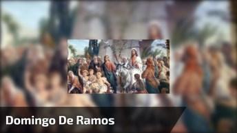 Domingo De Ramos, Abrindo A Semana Santa, A Entrada De Jesus Cristo!