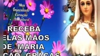Mensagem De Bom Dia Com A Proteção De Maria Mãe Intercessora!