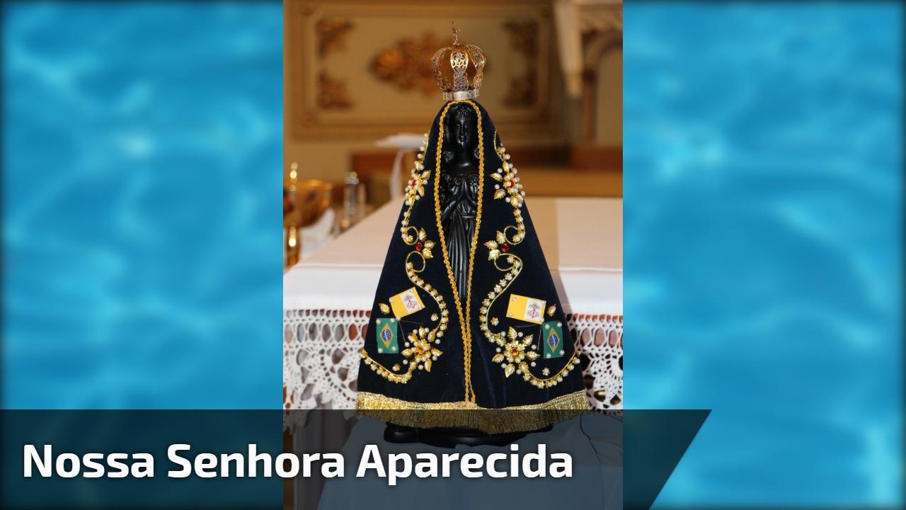 Bom Dia Religioso: Consagração A Nossa Senhora Aparecida, Envie Para Seus
