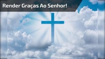 Oração Para Whatsapp - Render Graças Ao Senhor, Envie Aos Seus Amigos!