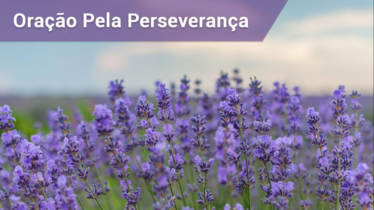 Oração pela perseverança