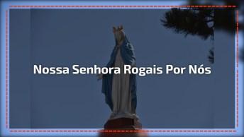 Pregação De Padre Fabio De Melo Sobre Maria. Nossa Senhora, Rogai Por Nós!