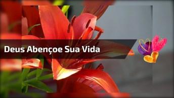Vídeo Com Linda Mensagem De Deus Para Você. Que Jesus Abençoe Sua Vida!
