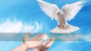 Vídeo Com Linda Mensagem De Deus Para Você, Vale A Pena Conferir!