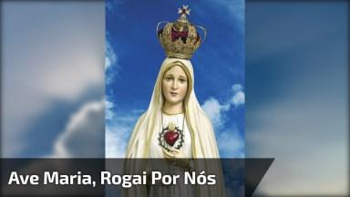 Vídeo Com Linda Música A Ave Maria Mãe De Deus, Rogai Por Todos Nós!