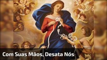 Vídeo Com Linda Música A Nossa Senhora Desatadora De Nós!