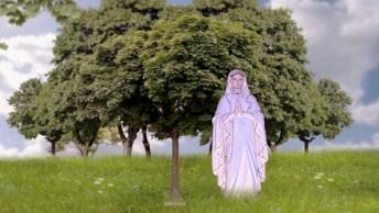 Vídeo Com Linda Oração A Nossa Senhora Pedindo Forças Para Os Enfermos!