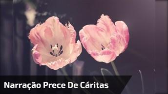 Vídeo Com Narração Da Prece De Cáritas, Perfeito Para Enviar Para Amigos!