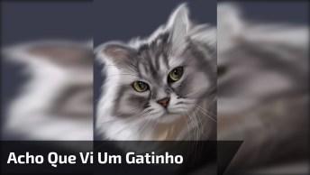 Acho Que Vi Um Gatinho Nesse Vídeo, Que Lindo Desenho, Confira!