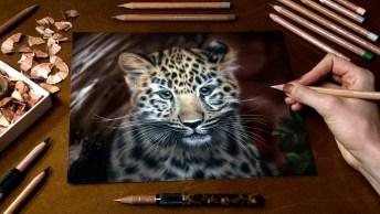 Arte De Desenhar Com Lápis De Cor, É Incrível A Riqueza De Detalhes!