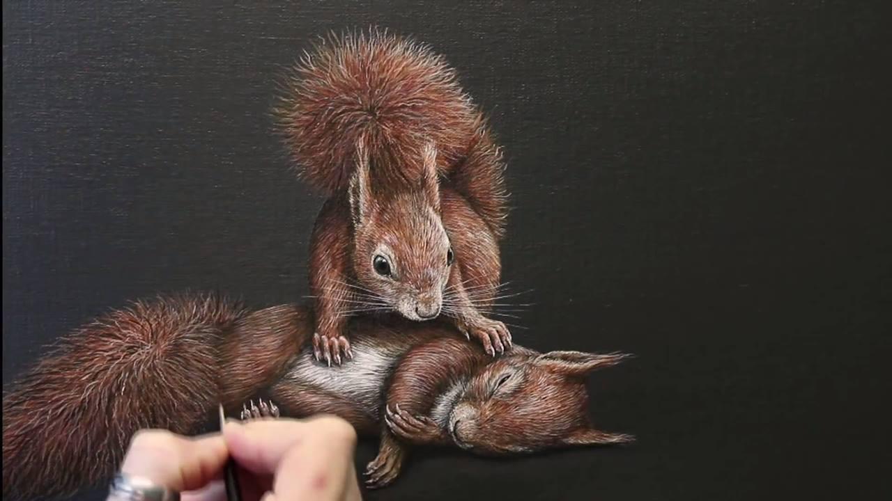 Desenho de esquilo feita de muito realista