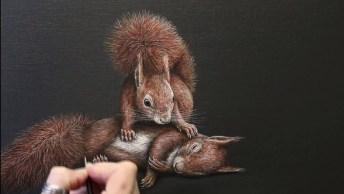 Desenho De Esquilo Feita De Muito Realista, Veja Estes Destalhes!