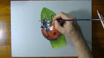 Desenho De Joaninha Em 3D, Que Trabalho Incrível, Confira!