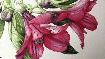 Desenho Impecável De Flores, Olha Só Que Trabalho Incrível!
